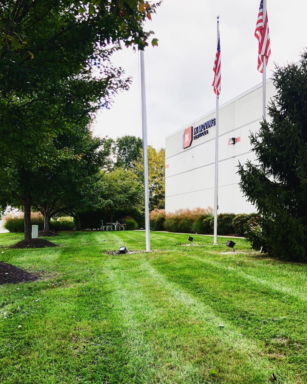 Pine Ridge Commercial Landscaping Project